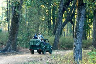Maruti Gypsy in Kanha National Park