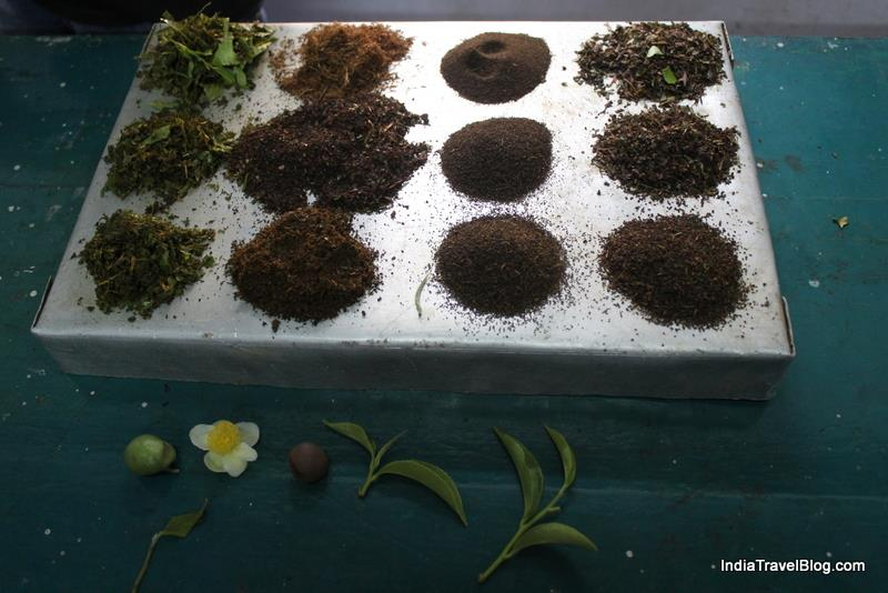 Different cuts of Tea produced at different stages of tea production