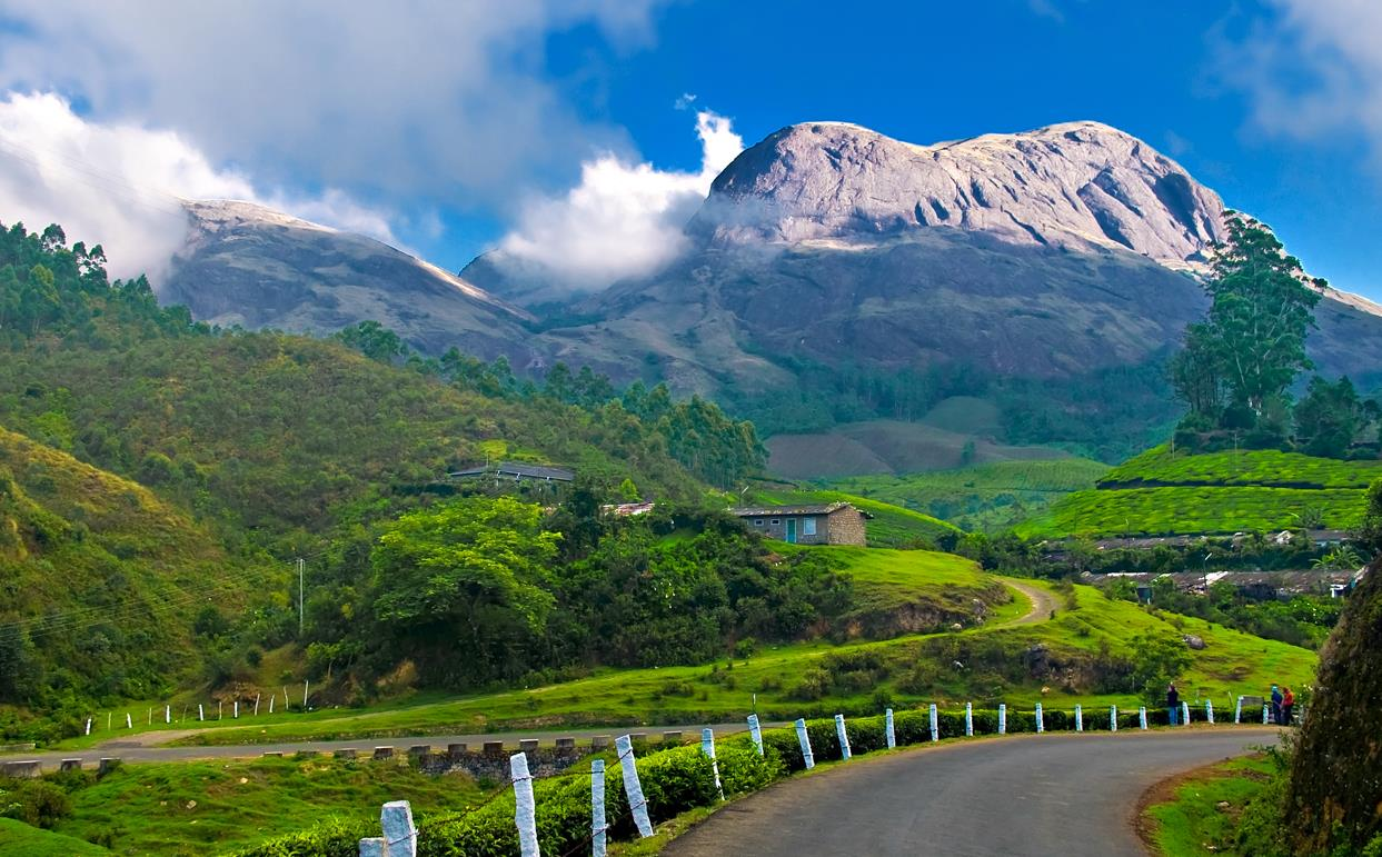 Munnar,Best Tourist Places in Kerala you Must Visit