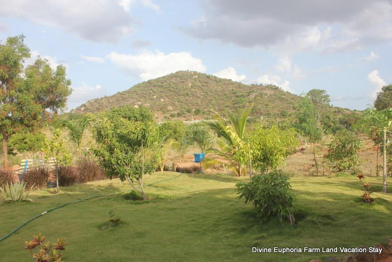Exotic view of hills at Divine Euphoria