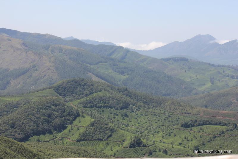 Beautiful view from Eravikulam National Park