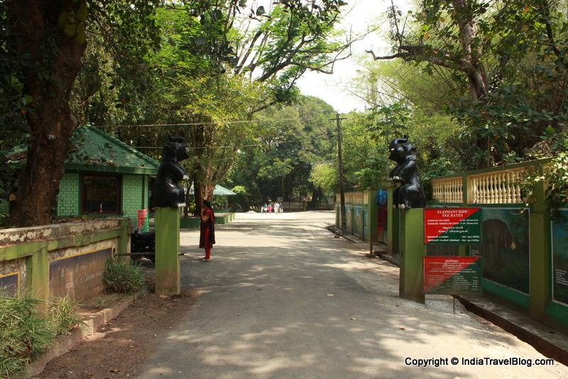 Kodanad Elephant Training Centre