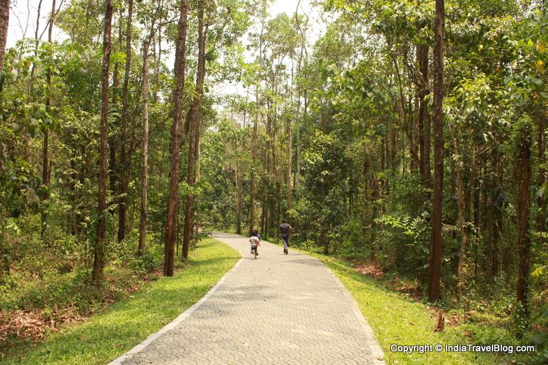 Walking through the trails in Abhayaranyam Zoo, Kaprikkad