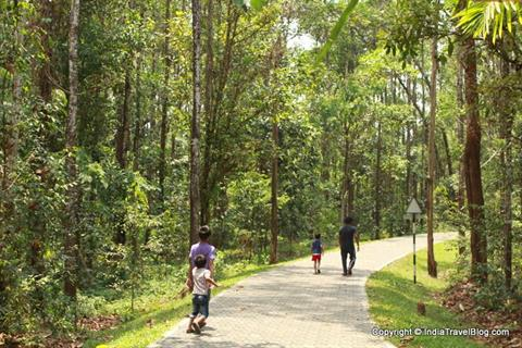 Long walking trails at Abhayaranyam, Kaprikkad
