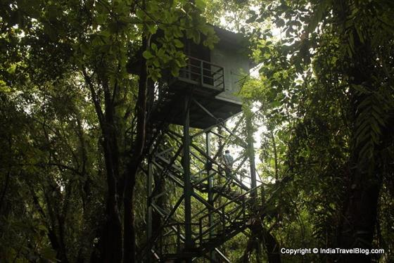 Watch towers in Kumarakom Bird Sanctuary