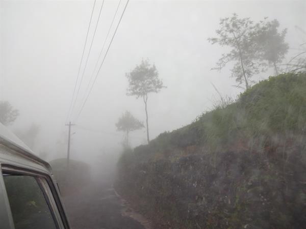 Munnar Hillstation