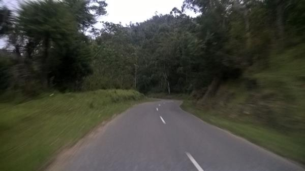 On road to Kolukkumalai, Munnar
