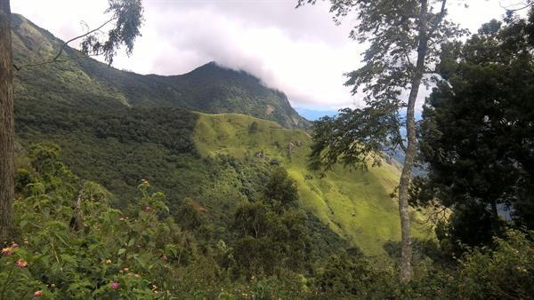 Munnar Topstation view