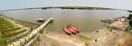 Pichavaram boating