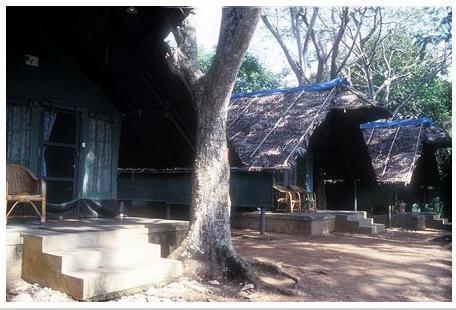 Tented Cottages at Bheemeshwari fishing camp near Bengaluru