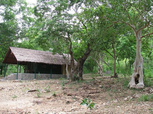 Tent House at Doddamakali Fishing camp near Bengaluru