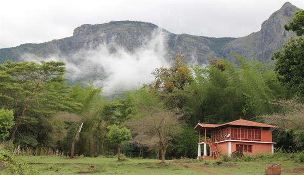 Cottages in De Rock Jungle Living Resort