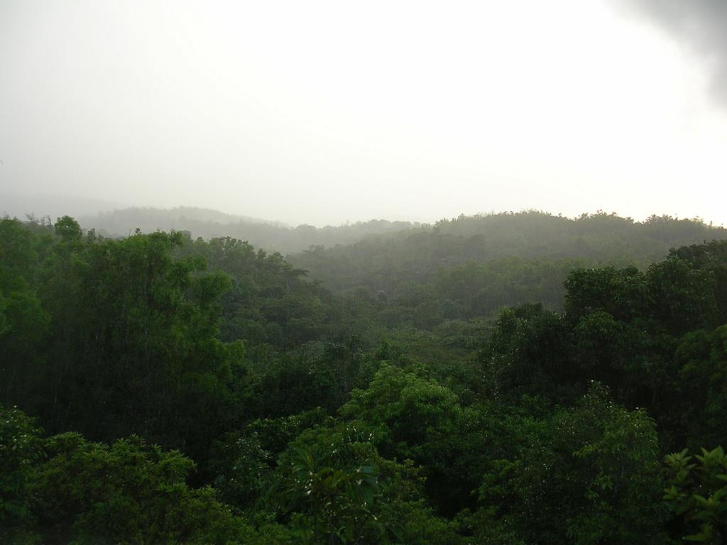 Coorg tourist place in karnataka