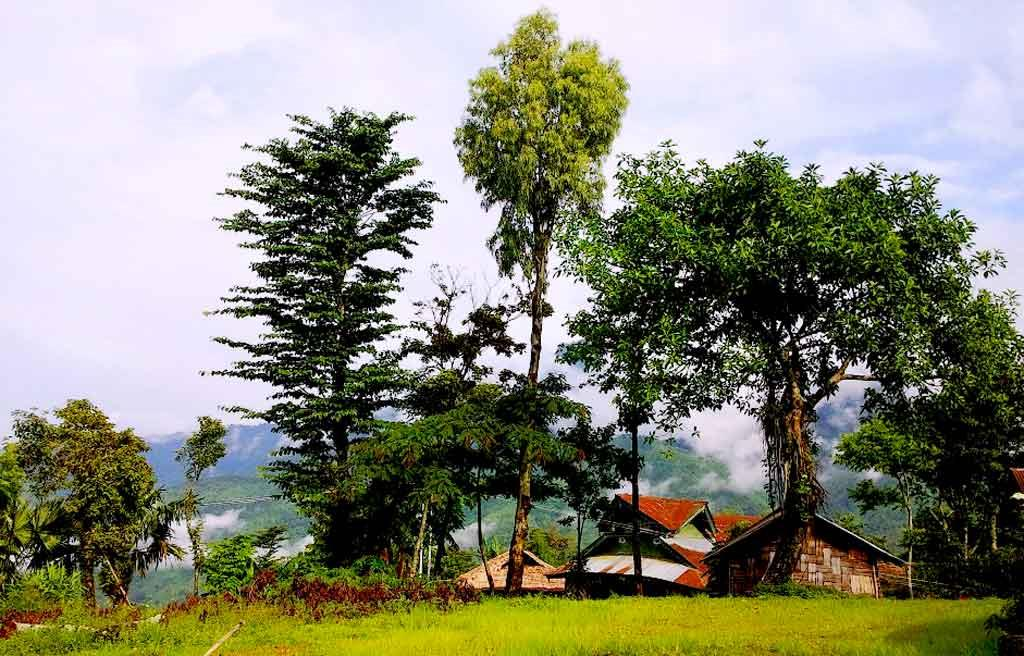 best spot to visit in Nagaland