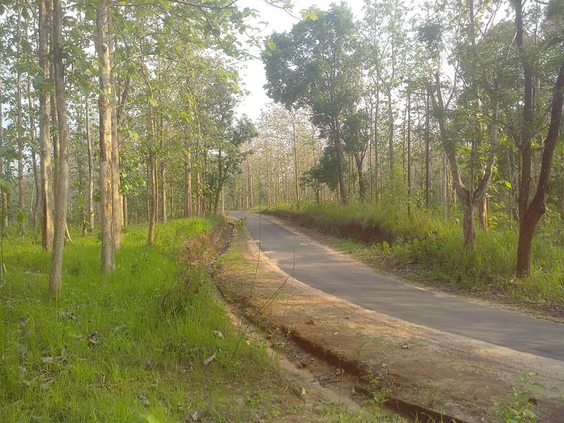 Ambasa, Best Tourist Places in Tripura