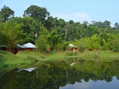 Coorg - Best Monsoon Destination in India