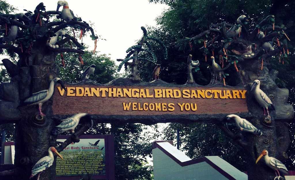 Vedanthangal_Bird_Sanctuary_Entrance