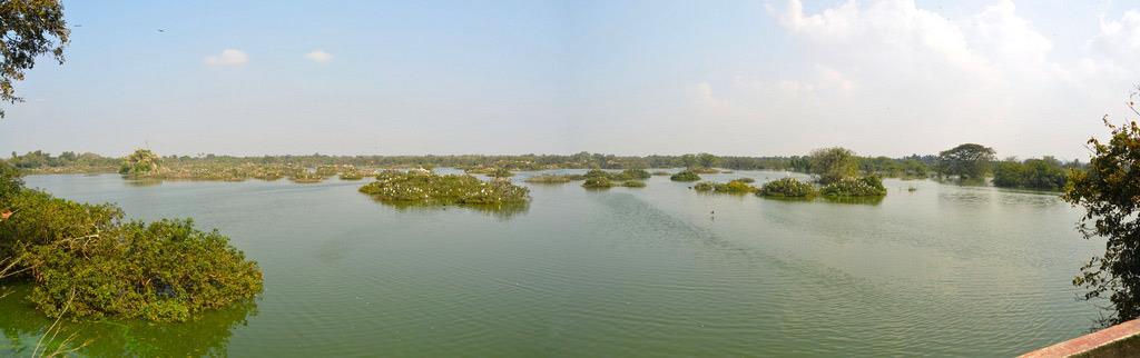 Vedanthangal-Bird-Sanctuary-TamilNadu