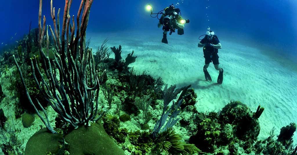 Scuba-Diving-under-sea