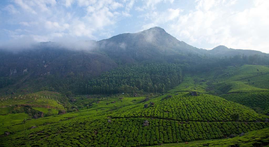 Munnar-Hills-view