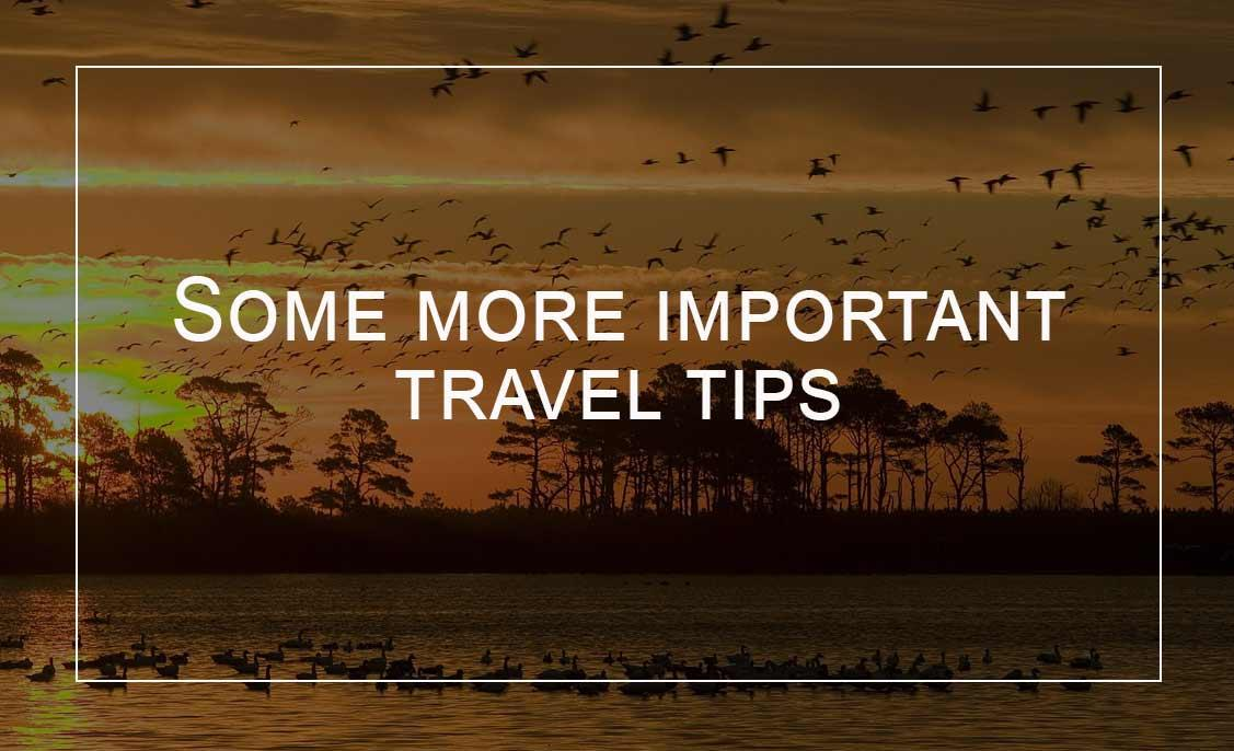 Sunset-Tips-before-visiting-a-wildlife-sanctuary