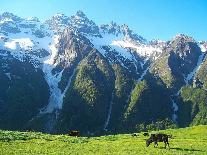 Dayara Bugyal in Uttarakhand