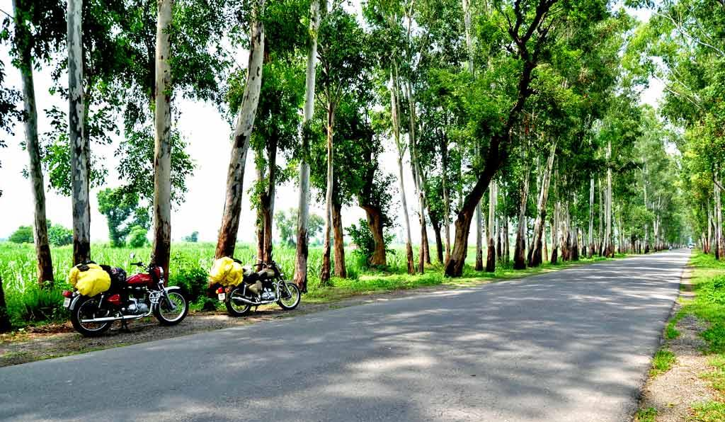bike trip adventures himalayas