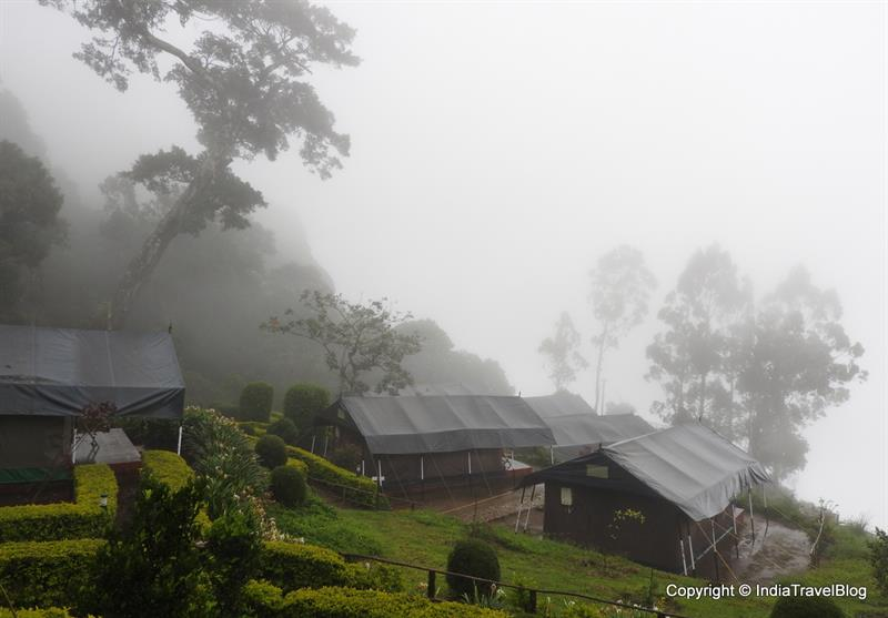 Why to visit Munnar