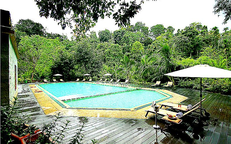 Vythiri Village Family Resort in Wayanad