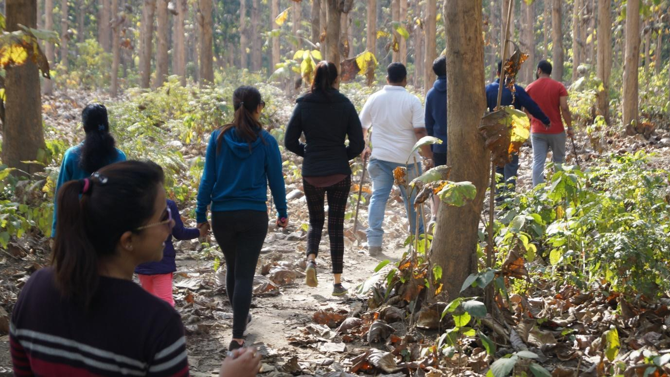 best national park in india