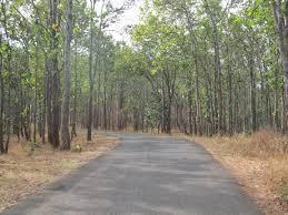 Pindrabera-Road-Dalma Wildlife Sanctuary
