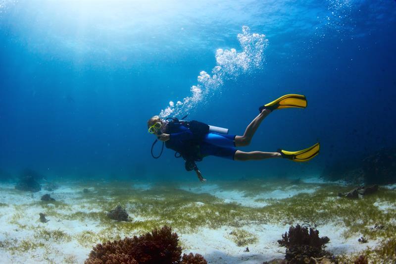 Snorkeling in Kovalam