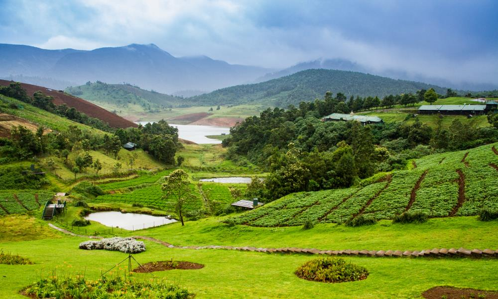 honeymoon package to ooty