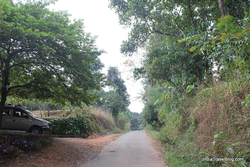 LizMerry Casa Munnar - View of the road