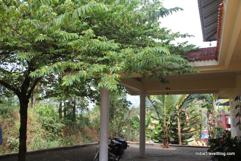 LizMerry Casa - Front porch and shade tree