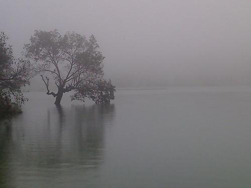 Tungarli Lake at Lonavala