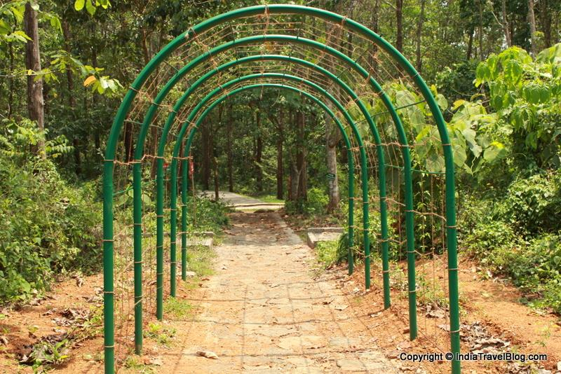 Climbers in walking trails - Abhayaranyam Zoo, Kaprikkad