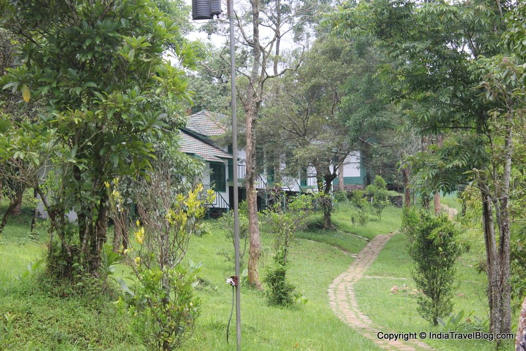 Orchard Holiday Resort - Walking trails