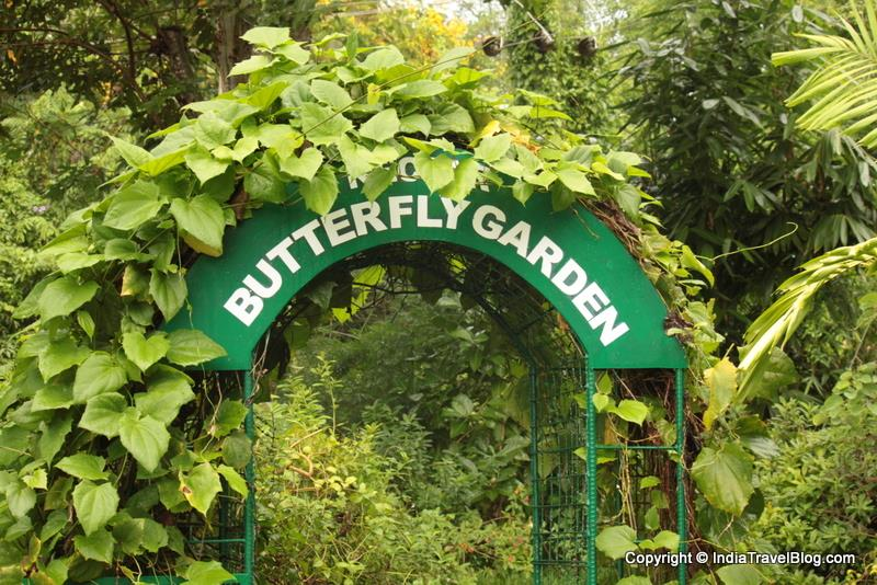 Butterfly Garden in Kumarakom Bird Sanctuary