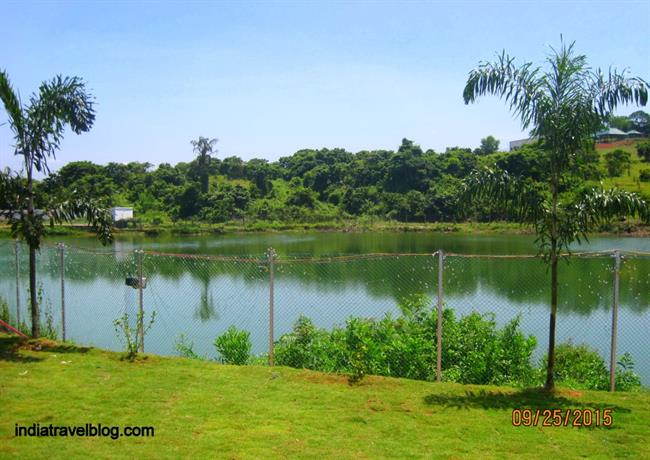 Pond in Childrens Science Park, Kochi