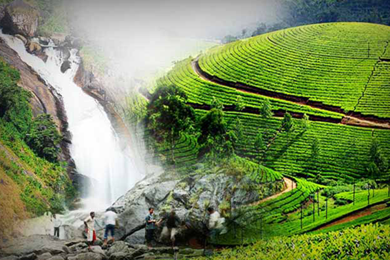 Monsoon in Munnar
