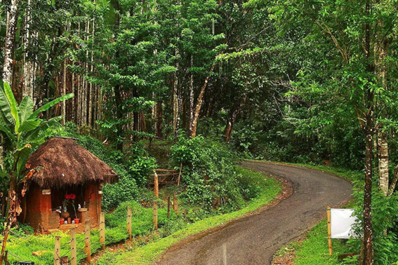 Agumbe inn monsoon