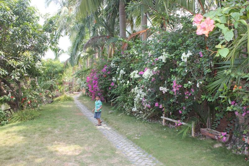 Take a cool walk at the walking trails in Country Club Kochi