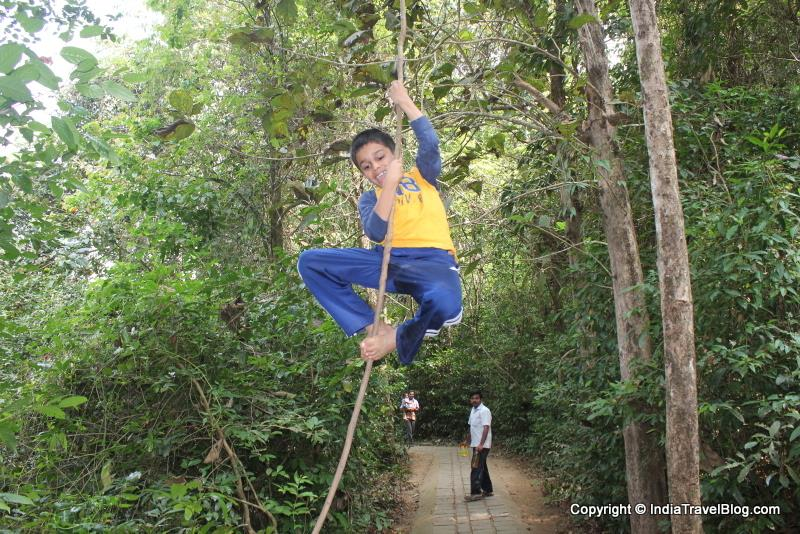 My son trying woody vine climbing at Paniyeli Poru