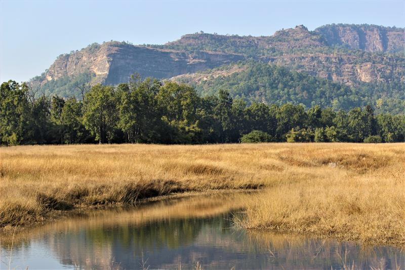 Landscapes of Bandhavgarh